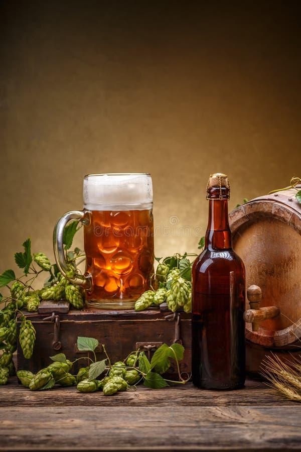 Свежая концепция пива стоковые фотографии rf