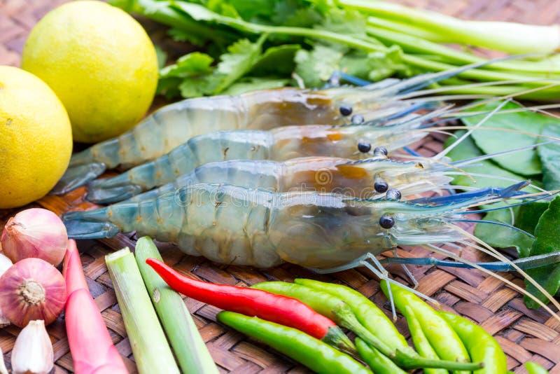 Свежая креветка и свежие ингридиенты для gung Tom yum стоковая фотография rf