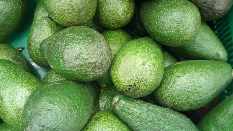 Свежая предпосылка авокадоа стоковое изображение rf