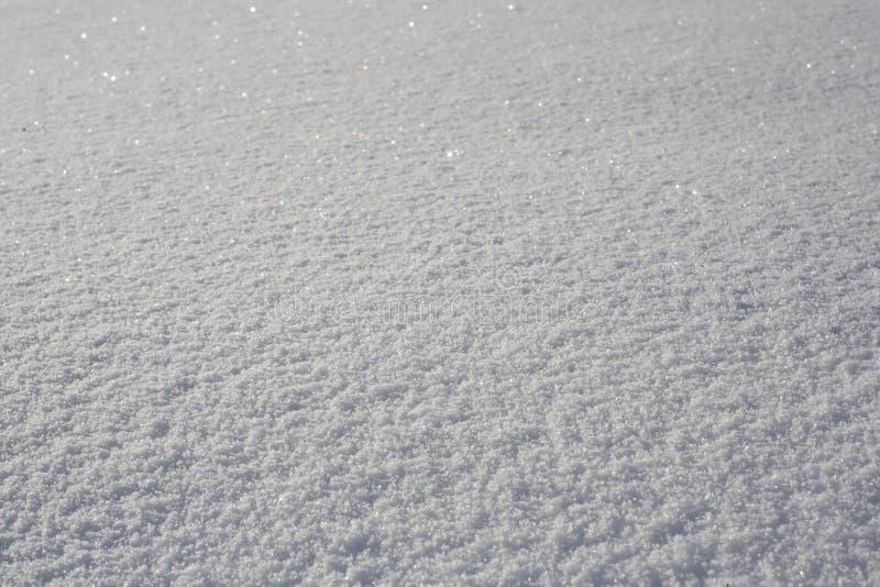 Свежая предпосылка снежка стоковое фото