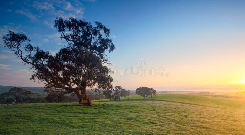Свежая сельская долина стоковое изображение rf