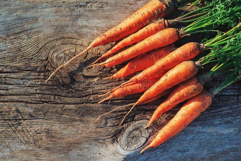 Свежая сжатая морковь на деревянном столе в саде Кератин витаминов овощей Естественная органическая морковь лежит на деревянной п стоковая фотография