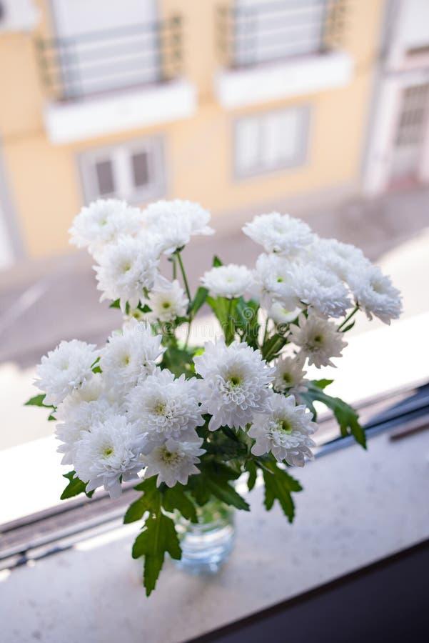 город, котором фотографии хризантем в вазе на окне скрипт