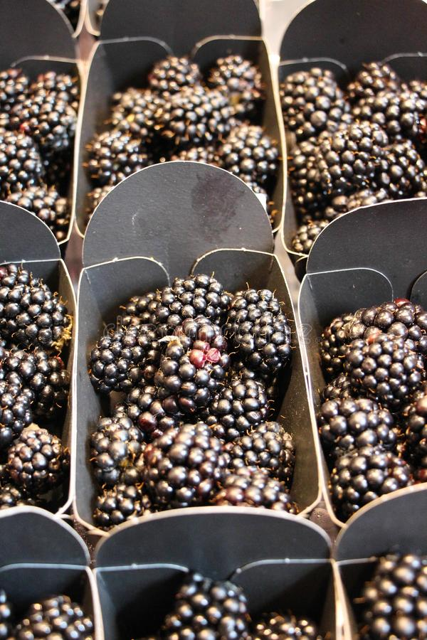 Свежая ягода ежа получать вне в коробках и показанный в окне магазина в ягодах и плодоовощ стоковое фото rf