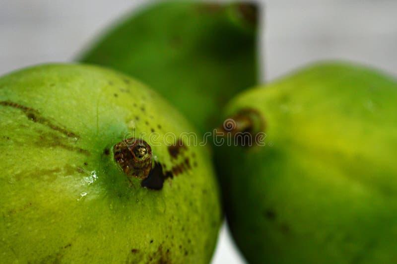 3 свежее и естественное зеленое тропическое манго стоковая фотография