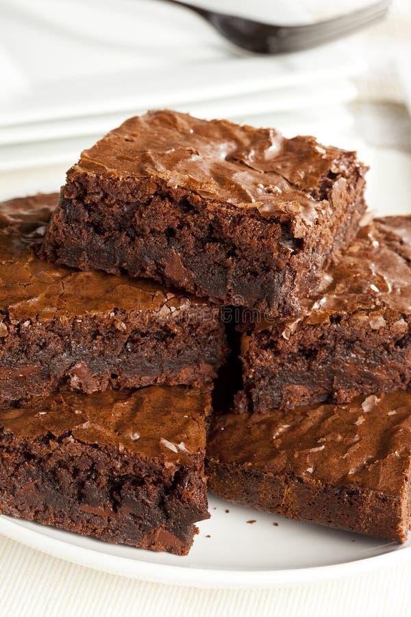 Свежее домодельное пирожное шоколада стоковые изображения rf