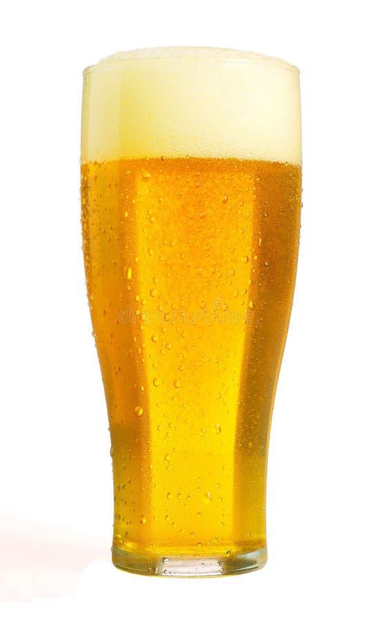 Свежее пиво стоковые изображения