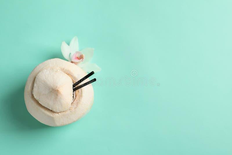 Свежее питье кокоса в гайке стоковая фотография rf