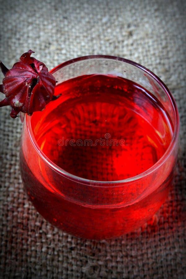 Свежее питье от Rosella или плодоовощ roselle стоковое фото rf