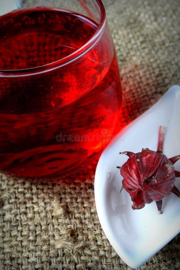 Свежее питье от Rosella или плодоовощ roselle стоковая фотография