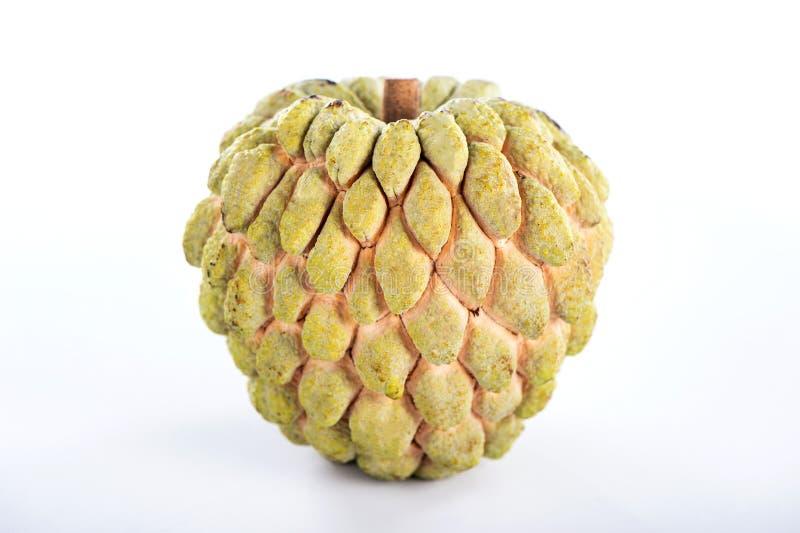 Свежее fruitCustard Яблоко яблока сахара, sweetsop стоковые изображения rf