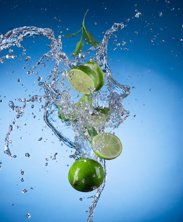 Свежее limeta с выплеском воды стоковая фотография