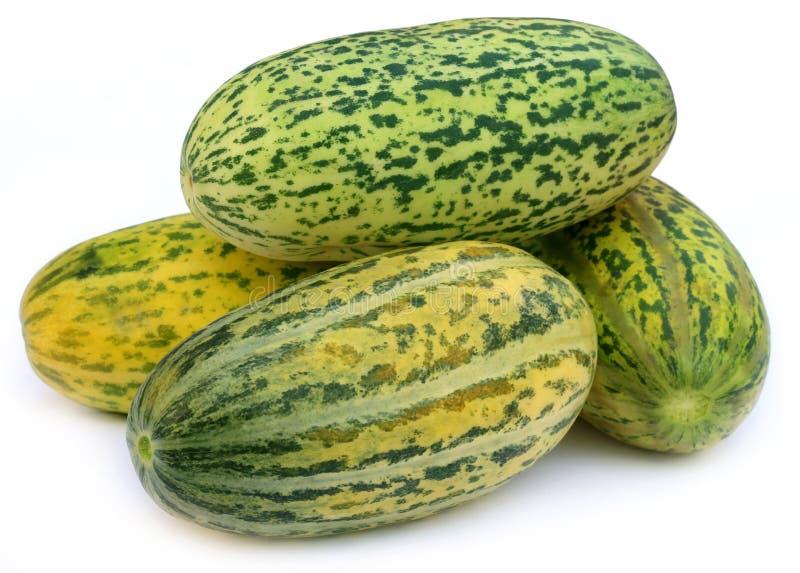 Download Свежее Mushkmelon стоковое фото. изображение насчитывающей витамин - 40578224