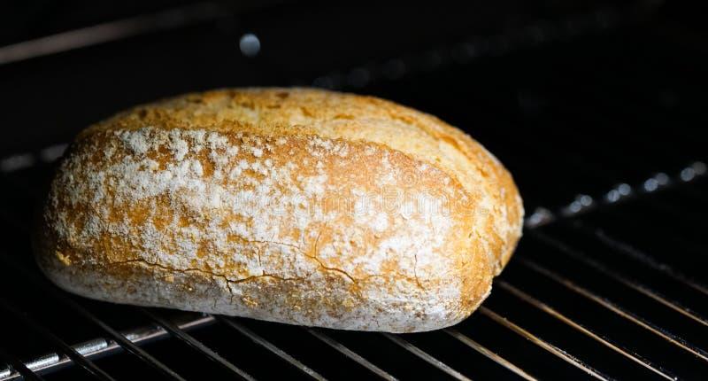 Свеже испеченная плюшка хлеба стоковое изображение rf