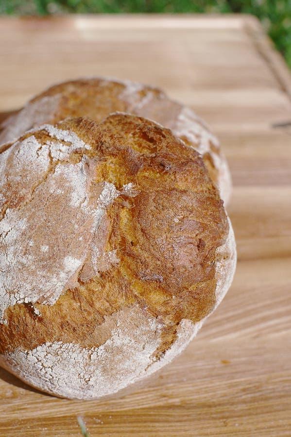 Свеже испеченный хлеб на деревянной разделочной доске изолированной на предпосылке травы стоковая фотография