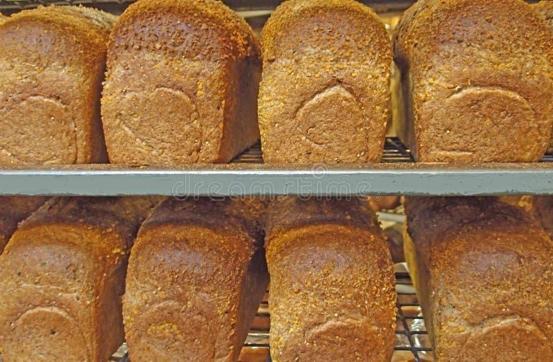 8 свеже испеченных хлебов всей пшеницы от печи в шкафе стоковая фотография rf