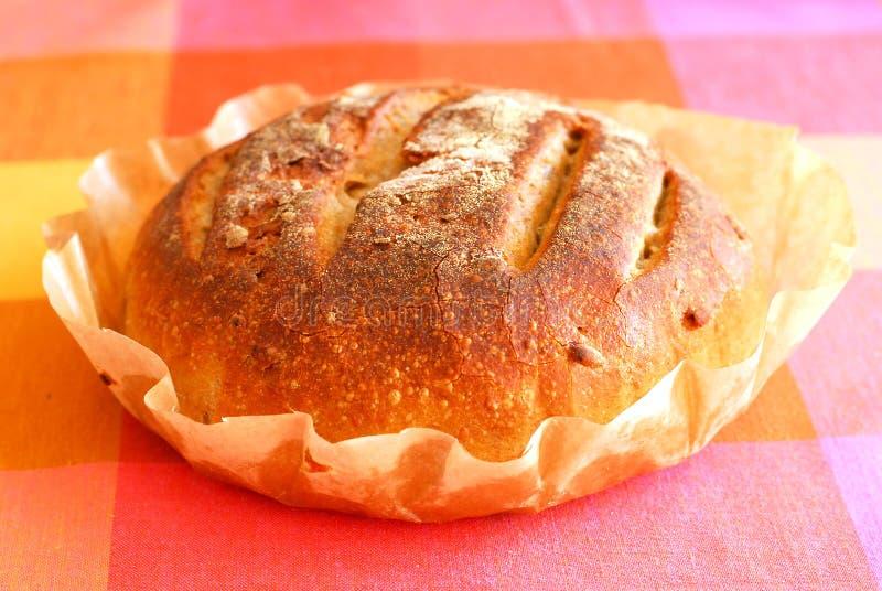 Свежий круглый хлеб sourdough стоковое изображение