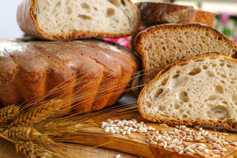 Свеже самонаведите испеченный хлеб сказанный по буквам sourdough и традиционная итальянка стоковая фотография