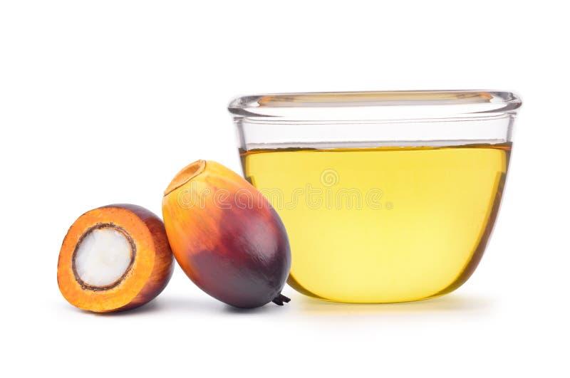 Свеже семя и отрезок масличной пальмы в половине стоковые фото
