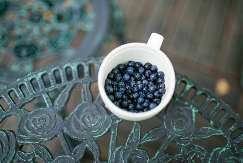 Свеже собранные голубики в чашке, стоя на старом металле c стоковое изображение