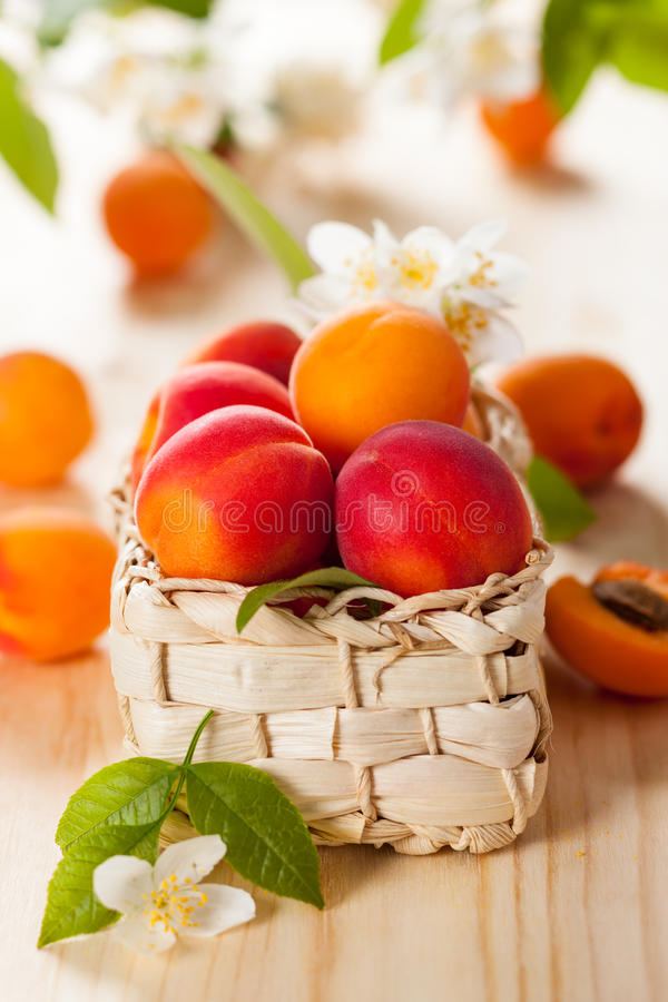 Download Свежие абрикосы стоковое изображение. изображение насчитывающей свеже - 41660099