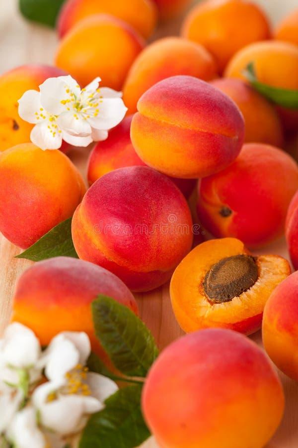 Download Свежие абрикосы стоковое фото. изображение насчитывающей благоухание - 41660296