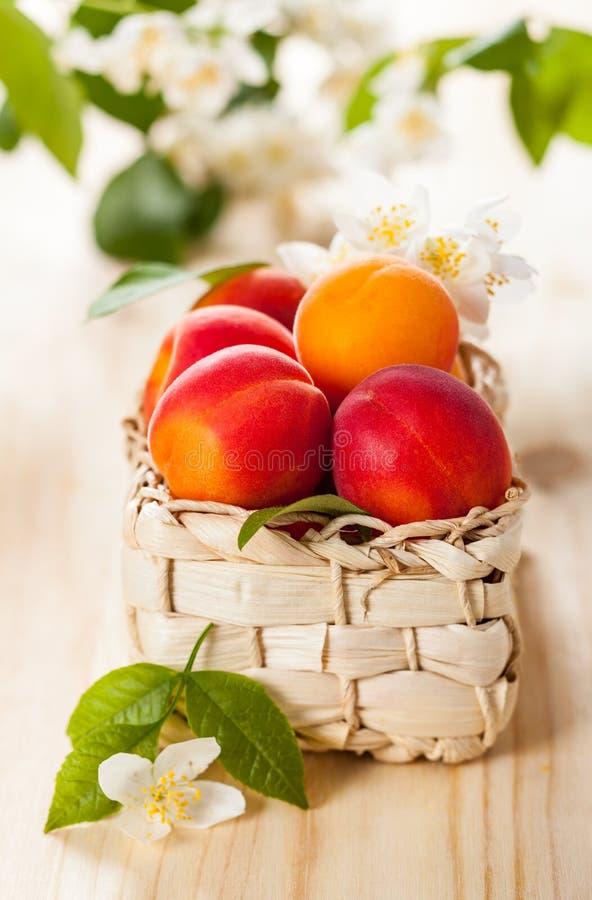 Download Свежие абрикосы стоковое изображение. изображение насчитывающей здорово - 41660301