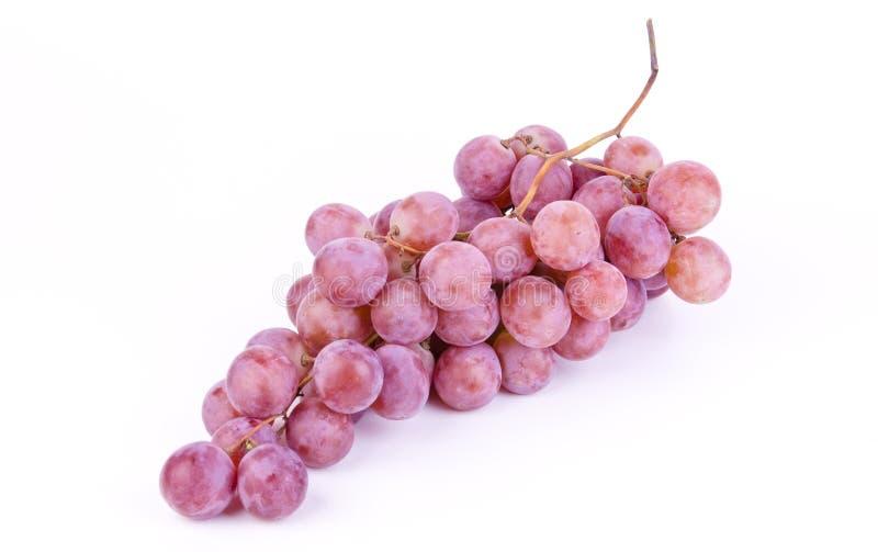 свежие виноградины белые стоковая фотография