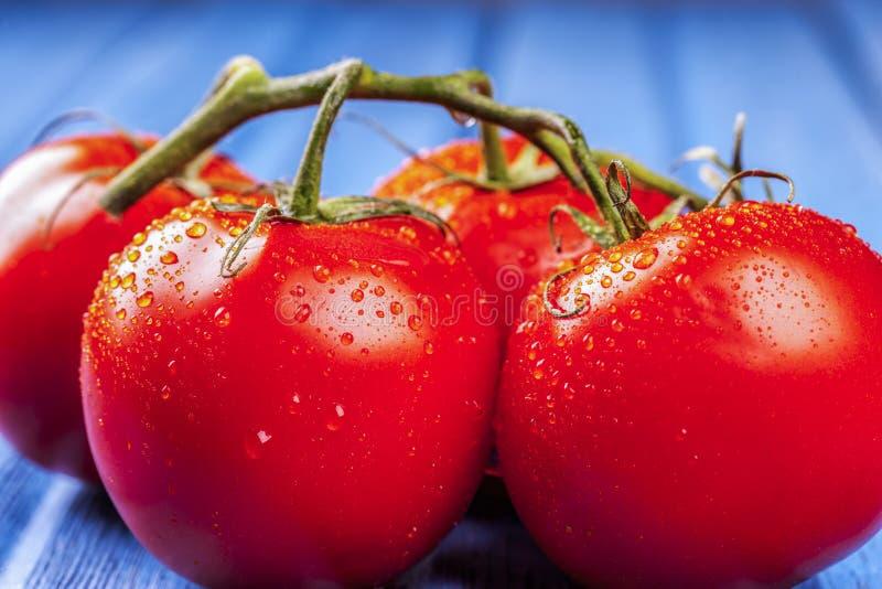 Свежие влажные томаты на голубой таблице стоковое изображение rf