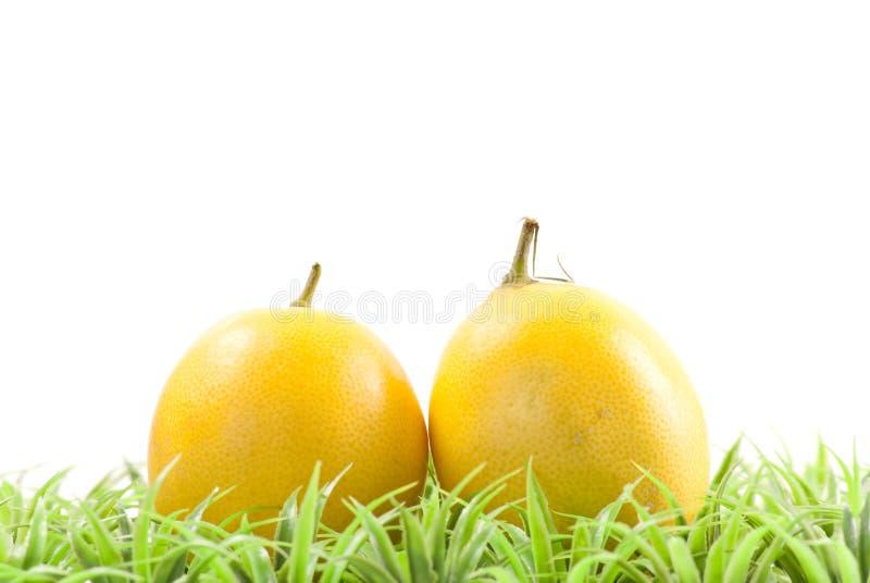 Download свежие выбранные лимоны стоковое изображение. изображение насчитывающей питание - 18398049