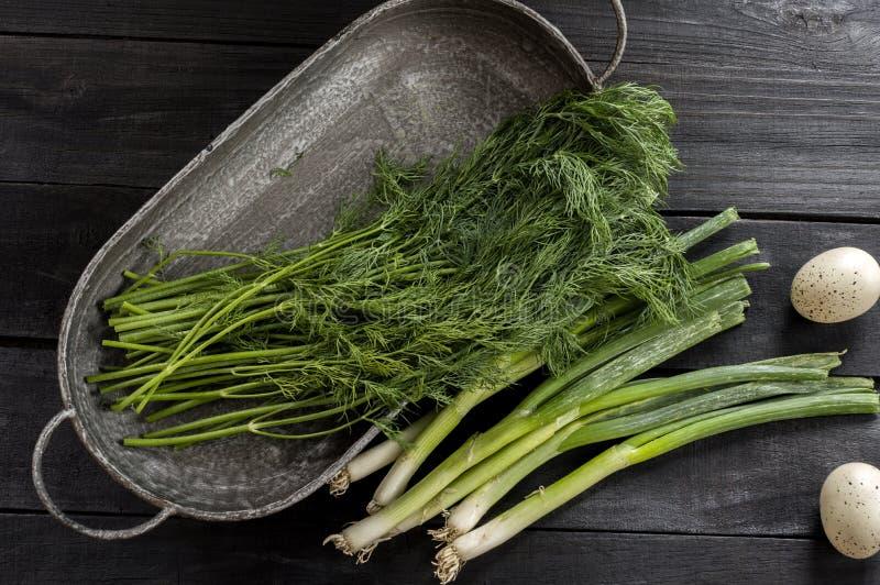 Свежие выбранные травы от сада стоковые изображения