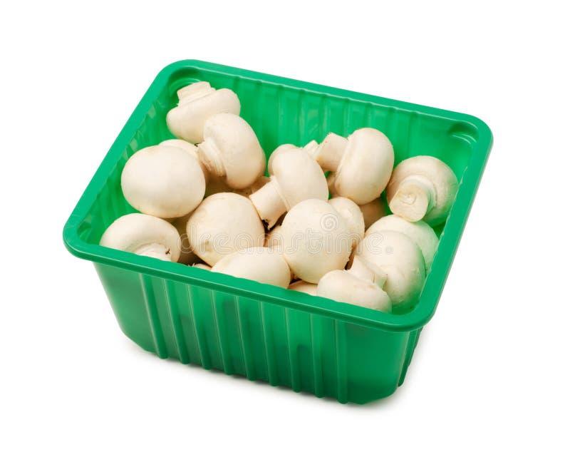 Свежие грибы champignon в упаковывая коробке стоковая фотография