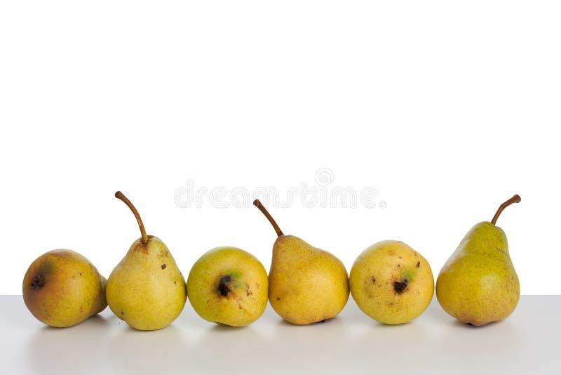 свежие груши стоковое фото rf