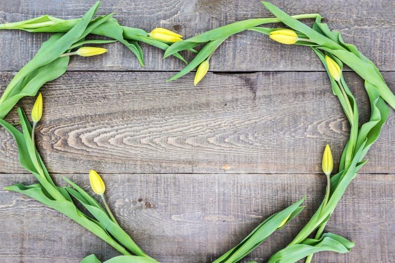 Свежие желтые тюльпаны аранжировали в форме сердца на деревенской ферме сватают стоковые фотографии rf