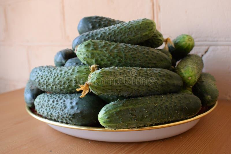 Свежие зеленые огурцы на плите r Огурец содержит витамины b, a стоковые изображения rf