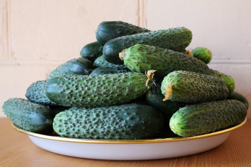 Свежие зеленые огурцы на плите r Огурец содержит витамины b, a стоковые фото