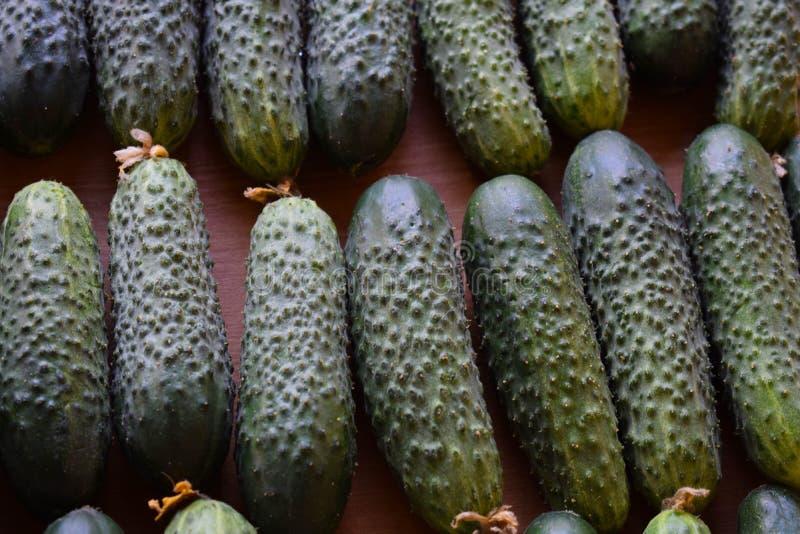 Свежие зеленые огурцы Полезные овощи и еда r Огурец содержит витамины b, a стоковая фотография