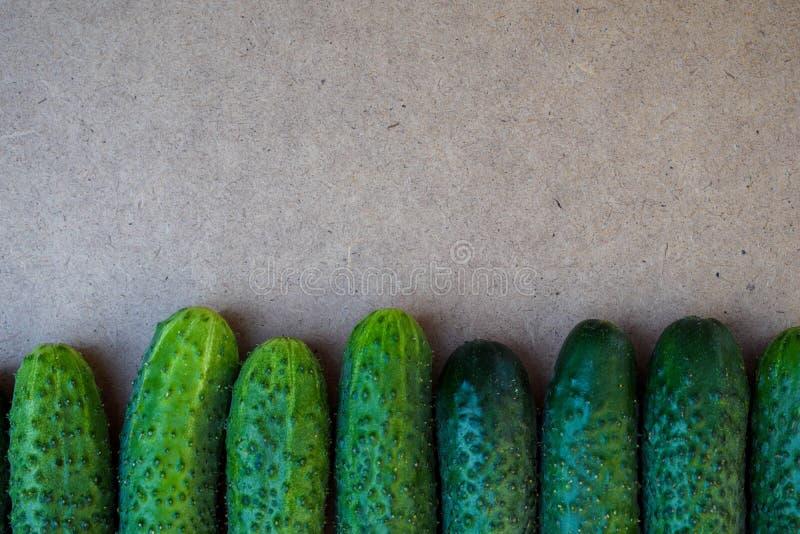 Свежие зеленые огурцы Полезные овощи и еда r r стоковое изображение