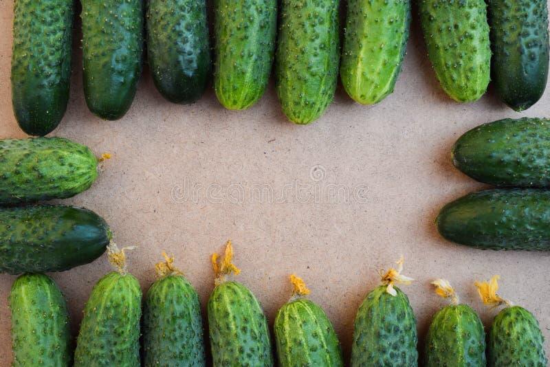 Свежие зеленые огурцы Полезные овощи и еда r r стоковые фото