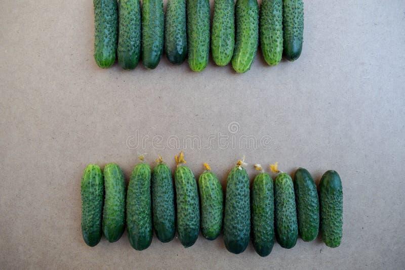 Свежие зеленые огурцы Полезные овощи и еда r Огурец содержит витамины b, a стоковое изображение rf