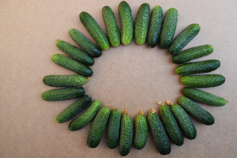 Свежие зеленые огурцы Полезные овощи и еда r Предпосылка огурцов r стоковая фотография rf