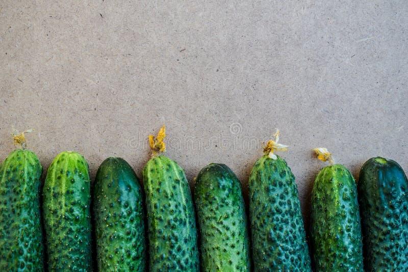 Свежие зеленые огурцы r Огурец содержит витамины b, a Космос свободного текста стоковые изображения rf