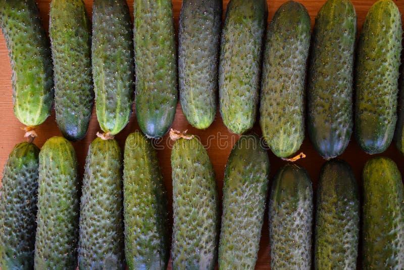 Свежие зеленые огурцы r Огурец содержит витамины b, a стоковые фотографии rf