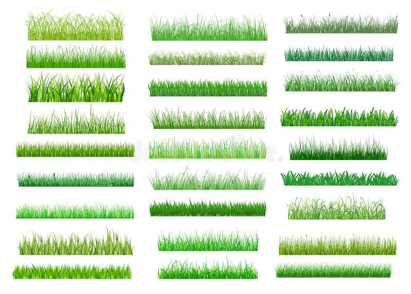 Свежие зеленые границы травы весны бесплатная иллюстрация