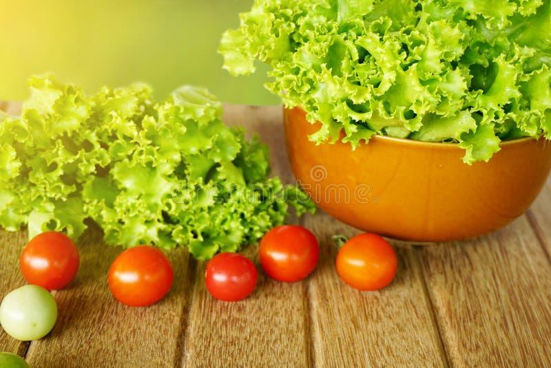 Свежие зеленые салат и томаты салата на деревянном над зеленой природой стоковая фотография rf