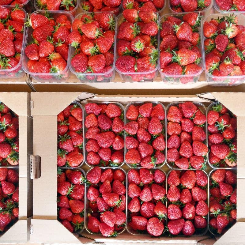 Свежие зрелые сладостные клубники в коробках коробки бумажных на рынке Органические ягоды обернутые в контейнере картона Взгляд о стоковое фото rf