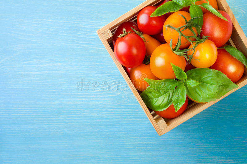 Свежие зрелые томаты и базилик в коробке на голубой предпосылке стоковое изображение rf
