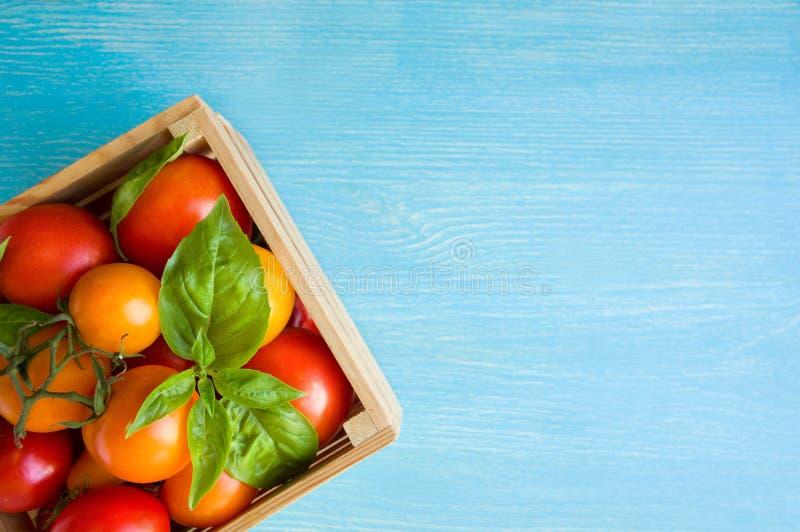 Свежие зрелые томаты и базилик в коробке на голубой предпосылке стоковая фотография rf