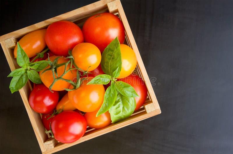 Свежие зрелые томаты и базилик в коробке на черной предпосылке стоковое фото