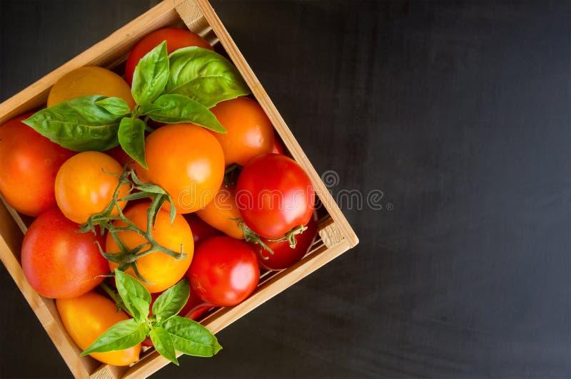 Свежие зрелые томаты и базилик в коробке на черной таблице стоковое изображение rf